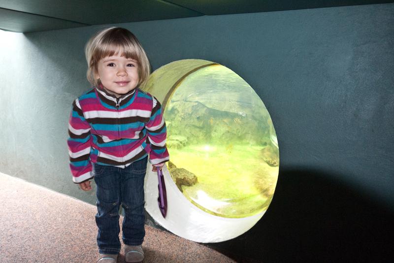 Weekend with Daniella | Pittsburgh National Aviary
